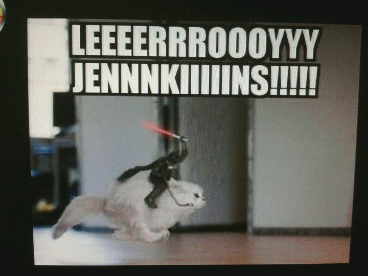 leeroy-jenkins-cat.jpg